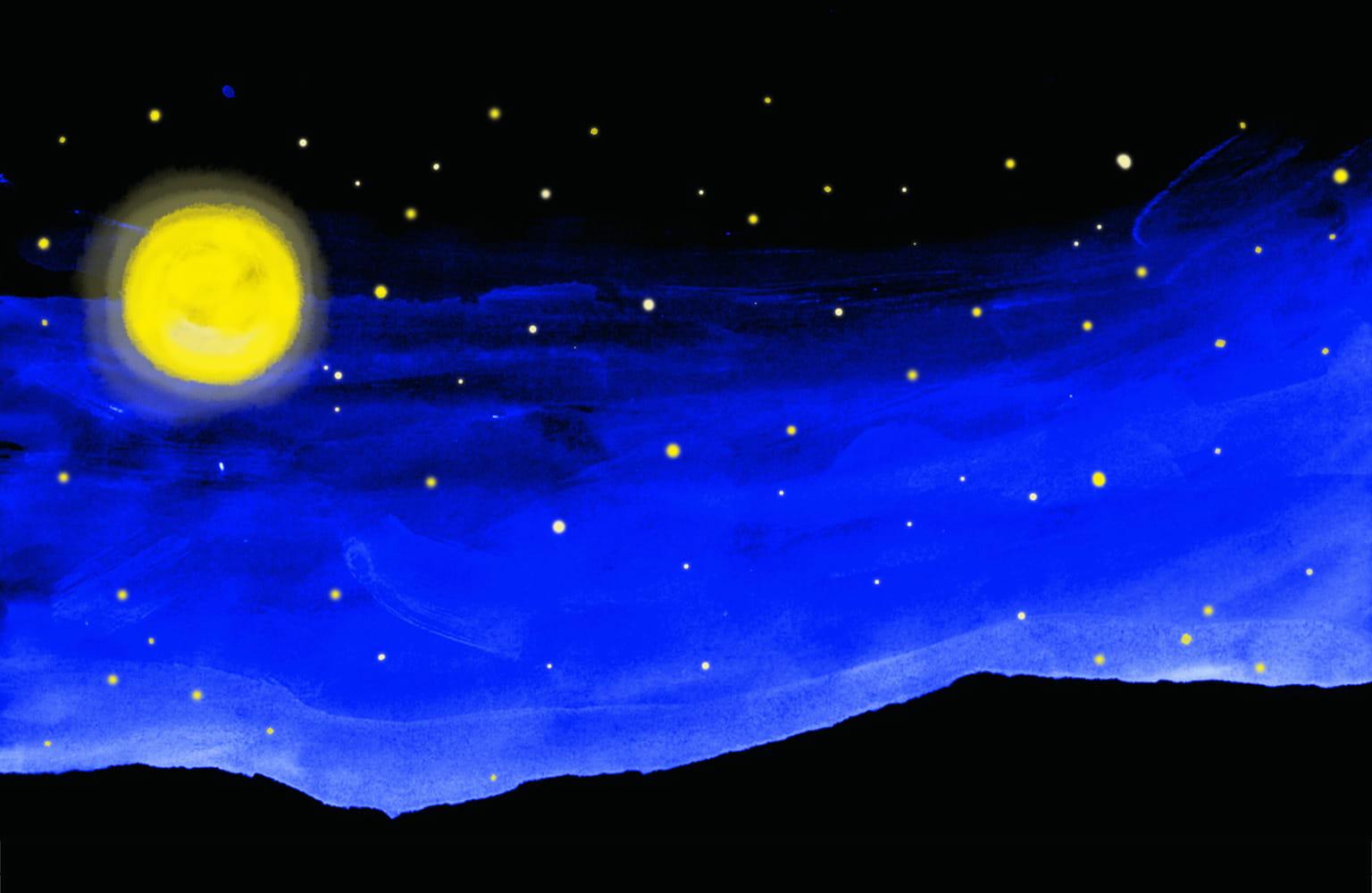 スジャータ婦人会が産声をあげたのは、仏暦2563年が始まる満月の日(2019年5月19日)