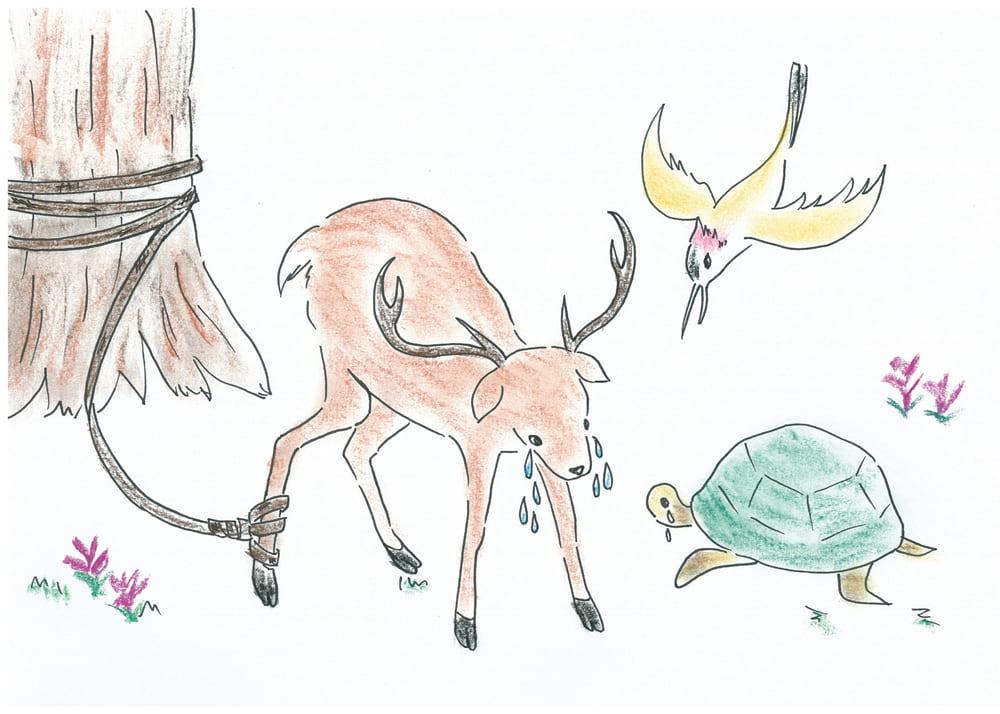 シカとキツツキとカメの友情|ジャータカ第206話